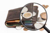 財布に虫眼鏡